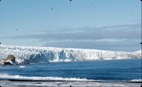 Vahsel Glacier 1954