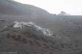HI_Marine_Debris-2493
