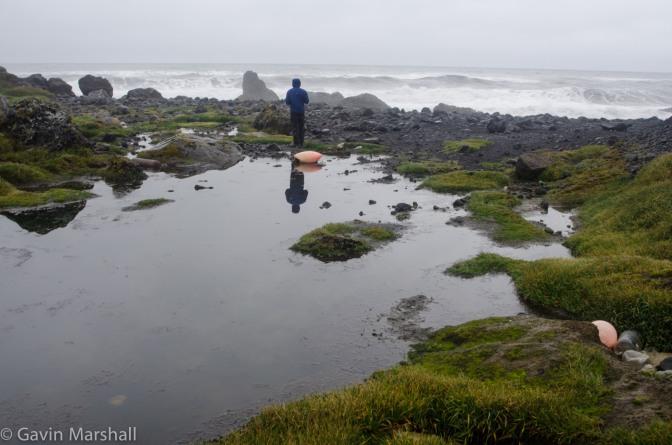 What a Waste – Marine Debris to Heard Island