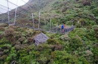 A typical NZ swing bridge - just a few minutes out from Harman hut.